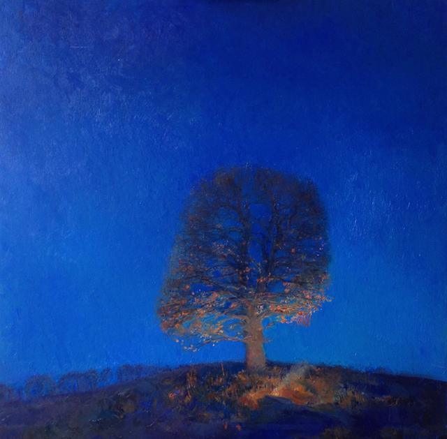 дерево ніч 640