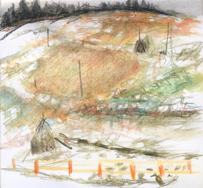 Travel sketch. Carpathians